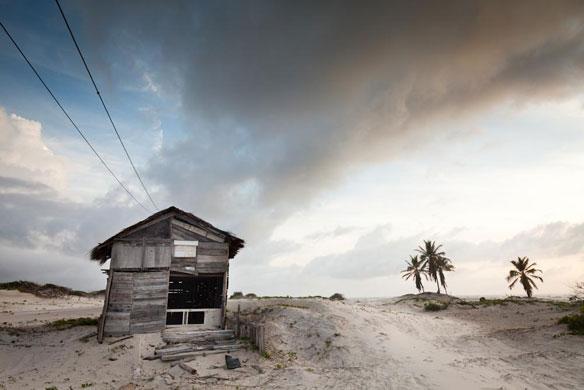 brazil brian hodges