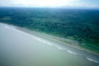Colombian Pacific Beaches at the Mouth of Bahia de Buenaventura; By William J. Neal & Orrin H. Pilkey