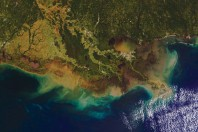 Major flooding on the Mississippi River to cause large Gulf of Mexico dead zone