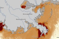 Mississippi Flood Impacts on Gulf Of Mexico