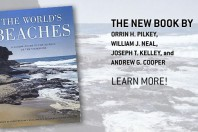 The World's Beaches : A Global Guide to the Science of the Shoreline