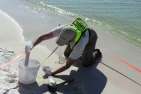 Task force: Restoring sediment key to Gulf revival