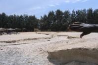 Ghana's Ongoing Battle Against Coastal erosion