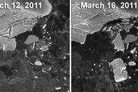 Japan Tsunami Broke Huge Icebergs Off Antarctica