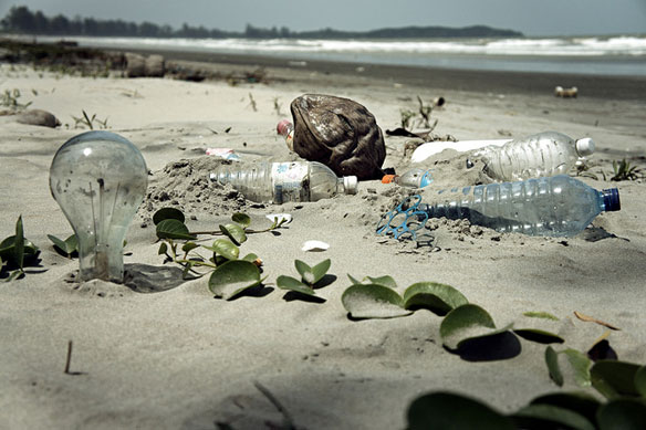 26th Annual International Coastal Cleanup: Local Action, Global Change !