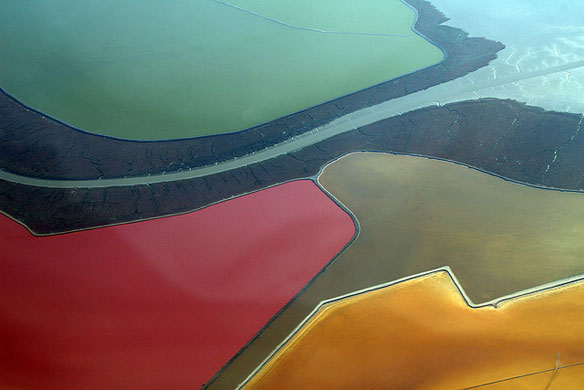 Oldest Bay Area Salt Flat Turned Into Wetland