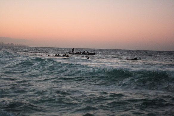 Scientists: Bacteria Spreading In Warming Oceans
