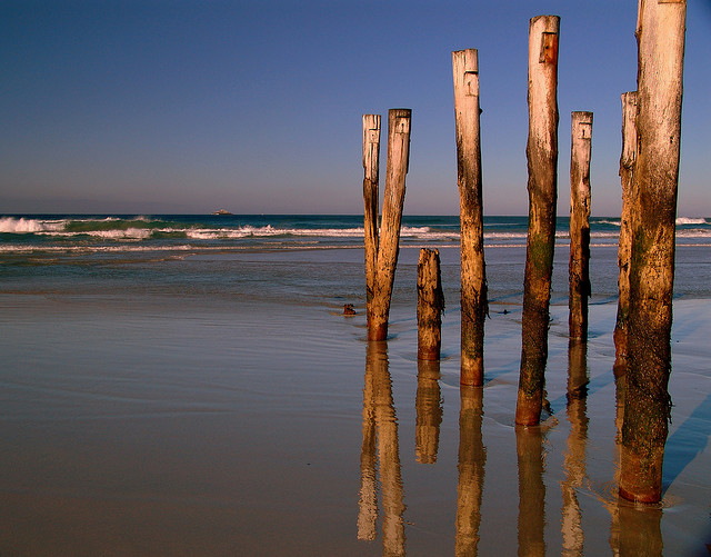 Plan To Combat Erosion,  Dunedin, South New Zealand