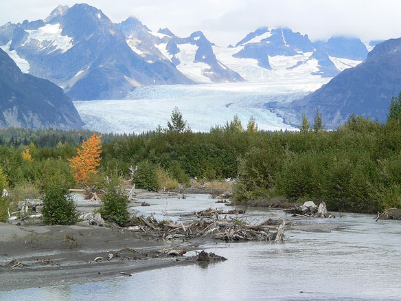 The Wild Alaskan Lands at Stake  If the Pebble Mine Moves Ahead