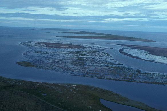 alaska seward peninsula