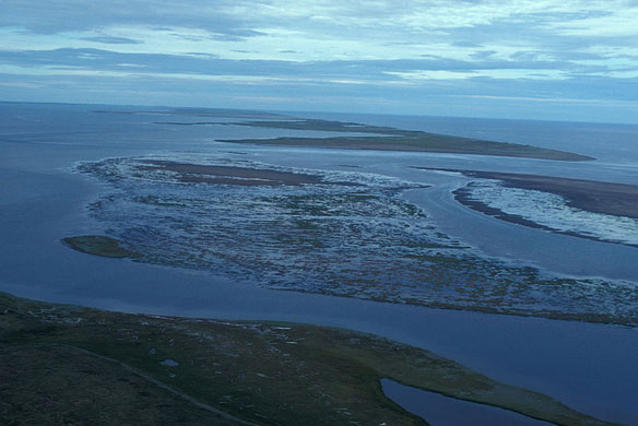 Ancient Bronze Artifact from East Asia Unearthed, Alaska's Seward Peninsula