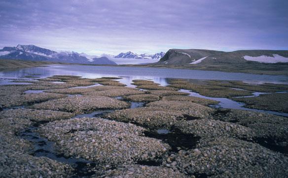 permafrost-nasa