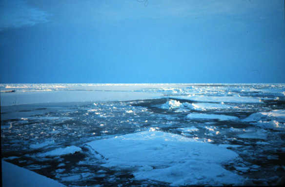 Arctic settles into new phase: warmer, greener, and less ice