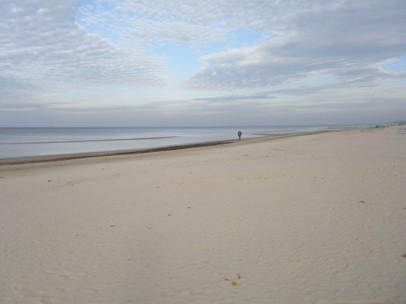 Jurmala Beach, Latvia; By Andrew Cooper