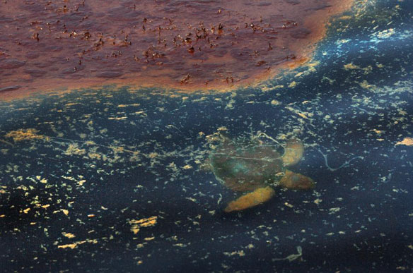 Engineering experts hit safety culture in BP spill ...