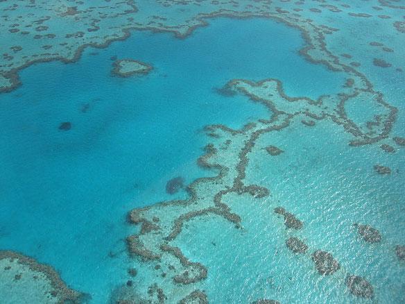 coeur-barriere-corail-australie