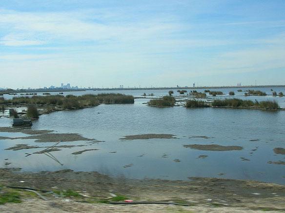 $102 Million in Wetlands, Barrier Island Restoration Awards for Louisiana