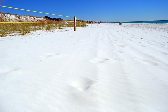 Okaloosa County White Sand Beach
