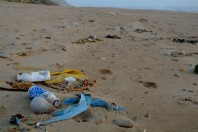plastic-pollution-bottles