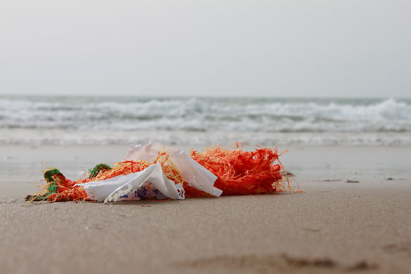 Accumulating Microplastic Threat to Shores
