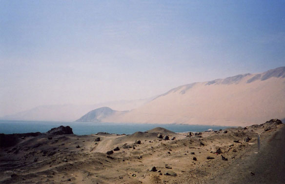 Microbial Oasis Discovered Beneath the Atacama Desert