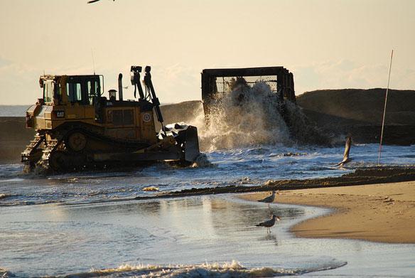 Beach Renourishment Harms Ecosystem