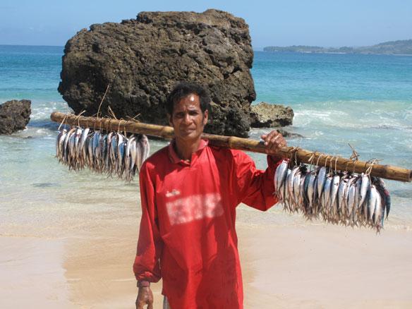 Can seaweed farming save Indonesian fishermen?