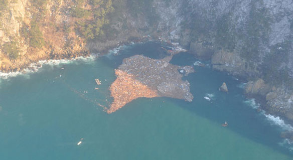 japan-tsunami-debris