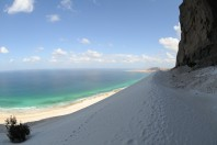 Socotra: The Isle of The Dragonsblood