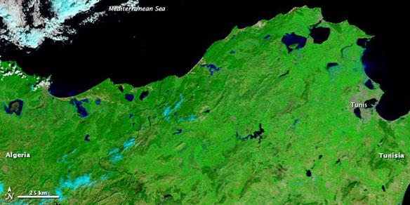 tunisia-flood-2