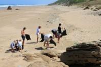 International Coastal Cleanup: September 15, 2018