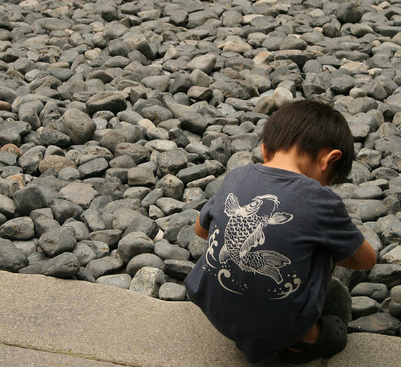 What Have Scientists Learned About the 2011 Japan Quake Cause and Consequences?