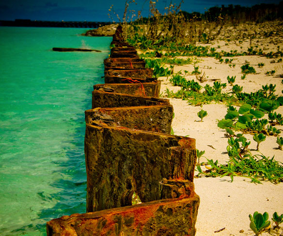Midway Atoll Expecting Japan Tsunami Debris Soon