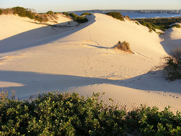kurnel-sand-dunes