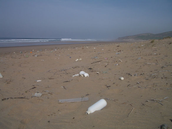 Plastic Garbage in Oceans: Understanding Marine Pollution from Microplastic Particles