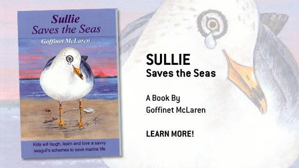 Sullie Saves the Seas