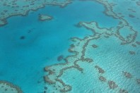 UN Warns Australia To Protect The Great Barrier Of Reef
