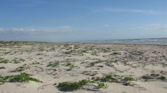 Padre-island-bom-09-2012-584