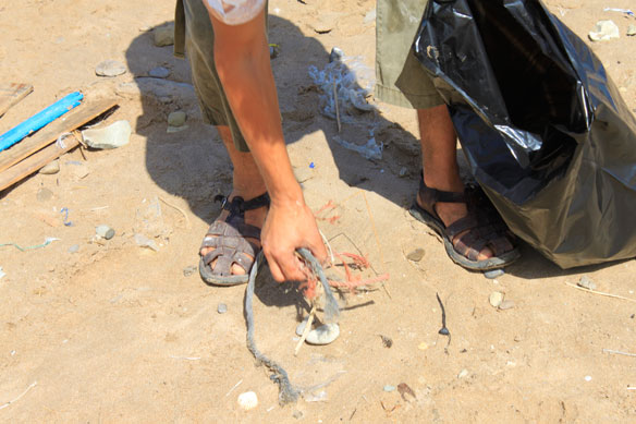 International Coastal Clean Up, 2012