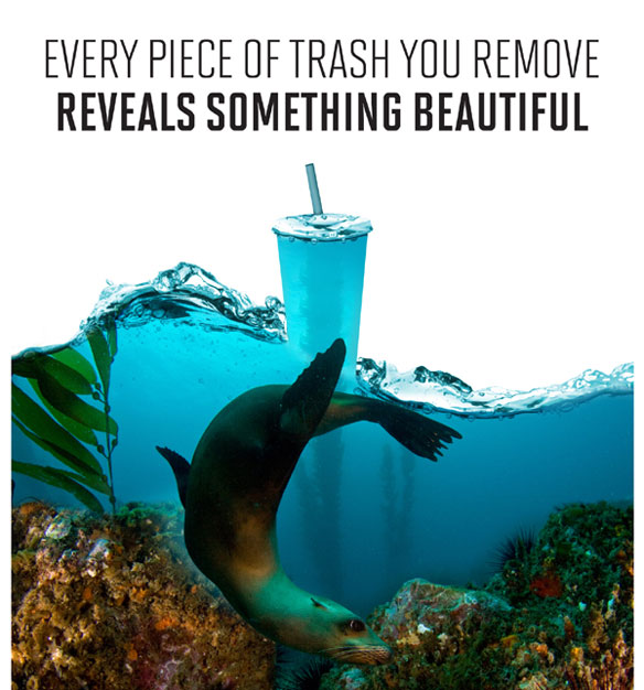 coastal-clean-up-day