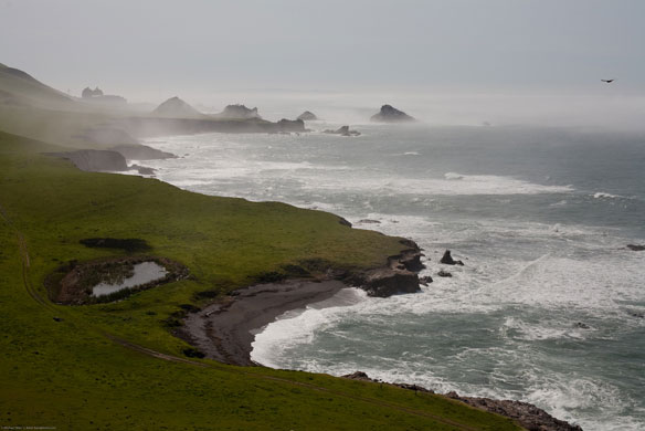 Plan Approved to Find Faults Near Diablo Canyon, California