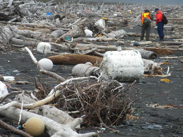 Computers Predict Path of Tsunami Debris