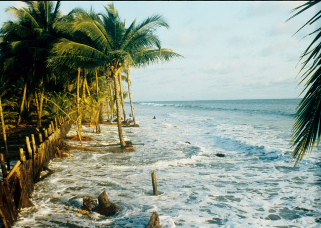 Beachfront Development along the Pacific Coast of Colombia: A good thing? By Orrin H. Pilkey & William J. Neal