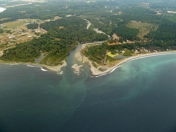 elwha-dam-removal-estuary