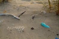 beach-plastic-pollution