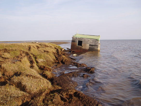 coastal-erosion-alaska-permafrost-collapse