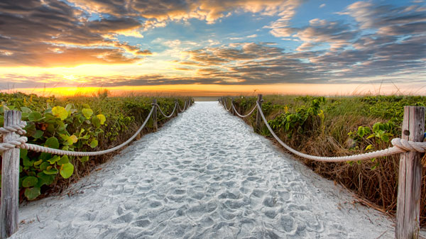 Sanibel Island, At Dawn; By Andrew Jalbert