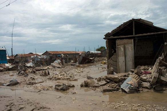 Q&A: Master Reforestation Plan to Save Haiti