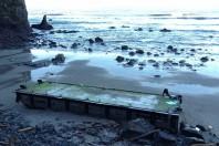 First Confirmed Japanese Tsunami Debris in California