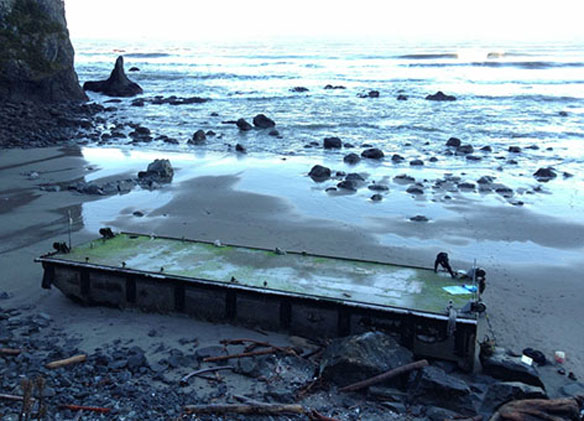 japan-tsunami-marine-debris-beached-dock-washington-olympicnp_national-park-service_472